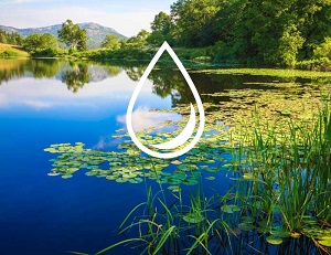 One Water Summit: Harnessing The Power Of Sharing To Create A Sustainable Water Future For All
