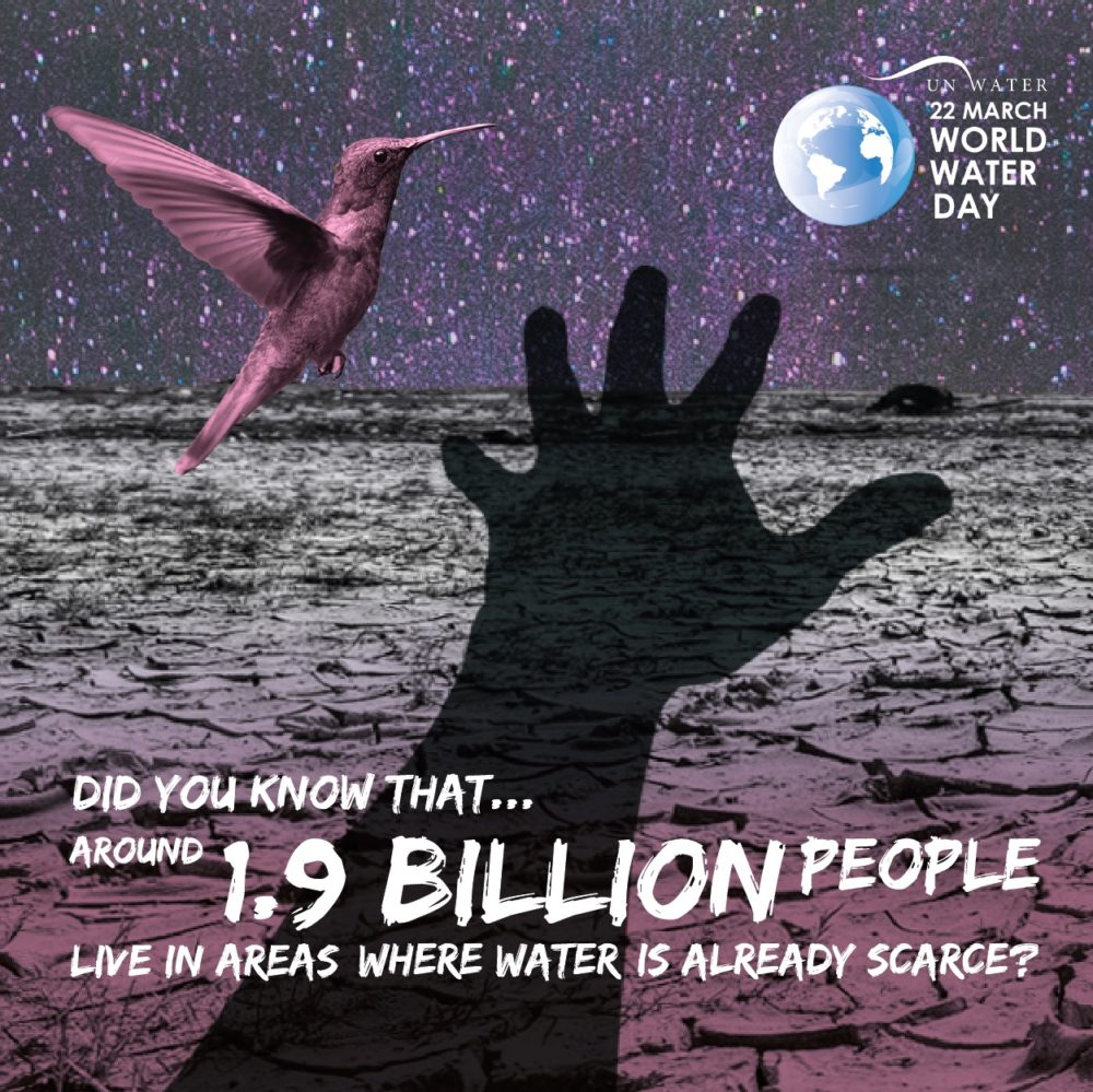 """World Water Day Explores """"Nature for Water"""" March 22"""